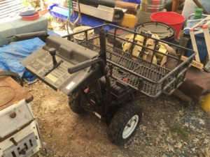 Motorized_Cart_2